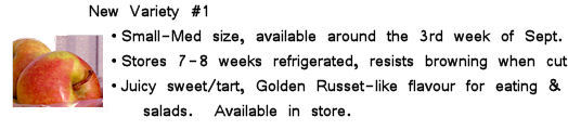 Image with info about New Variety #1 apples