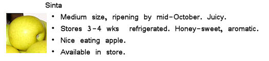 Image of Sinta apple with info
